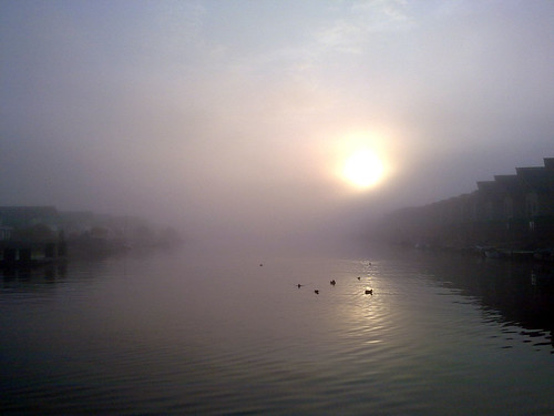 lake fog sunrise leeuwarden zuiderburen