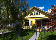 Yellow Bungalow House