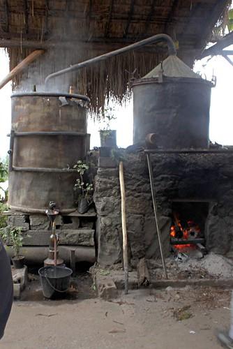 La Réunion  -Alambic (distillation des huiles essencielles)