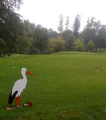golf2011-4
