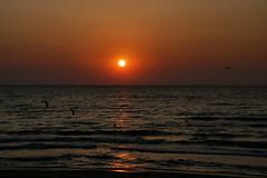 The sea at dawn with rising Sun at Mamaia