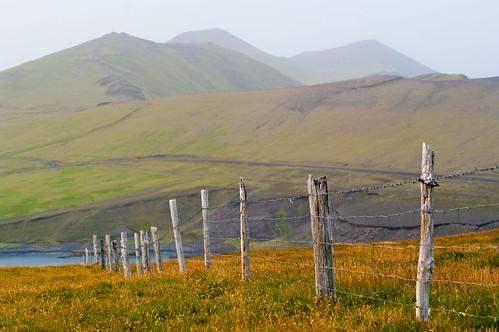 Island fenceline