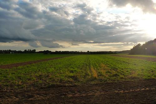 landschaft-1090871