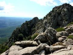 Depuis la crête rocheuse au N du col 780m : versant RD du ruisseau de Pinarellu  branche W (Trovone Minuto)