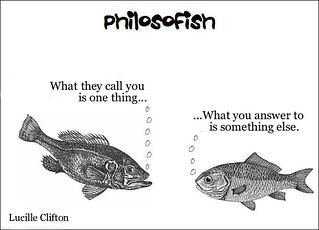 philosofish 31
