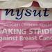 Making Strides - Buffalo 2011