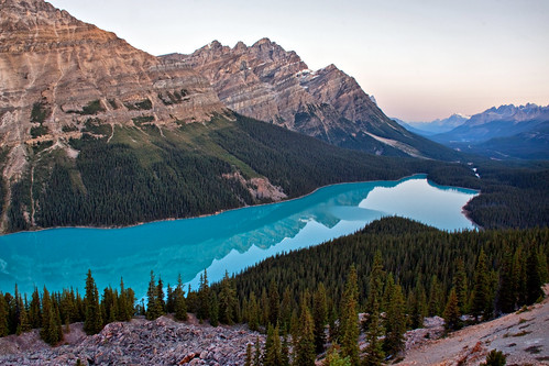 park blue trees lake canada mountains nature canon landscape rockies turquoise jeremy canadian glacier national alberta banff 1000 glacial peyto duguid 50d jeremyduguid
