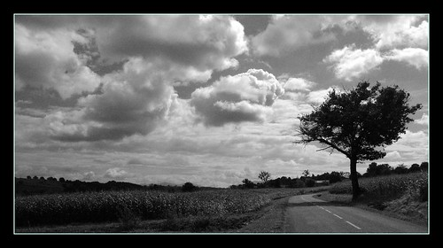 road sky tree clouds camino path route ciel nuages arbre chemin caminho