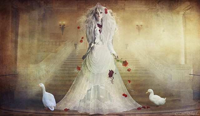 The bloody bride