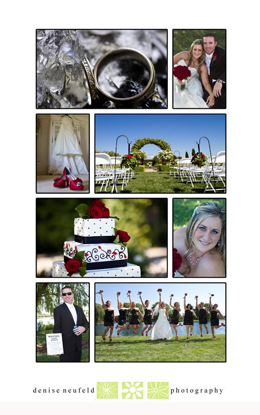 Skylake Gardens Wedding Photography