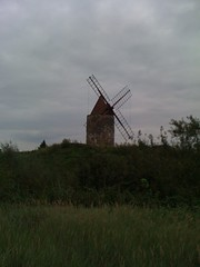 prairie, windmill, field, plain, mill, wind farm, rural area,