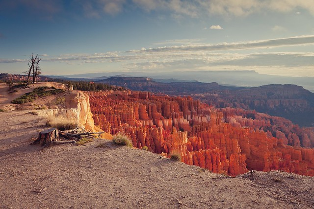 Bryce Canyon Rim