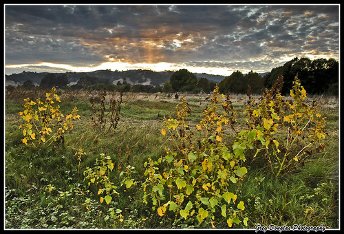 park sunset clouds landscape weeds dusk vacaville ndfilters northernca lagoonvalley