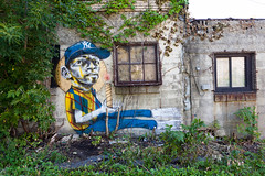Living Walls - Albany, NY - 2011, Sep - 03.jpg by sebastien.barre