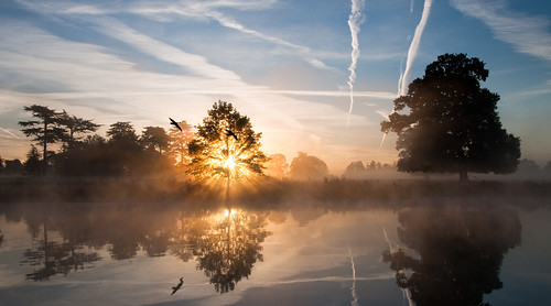 mist lake reflection misty sunrise dawn geese sunburst contrails slough berkshire kevday langleypark flypast