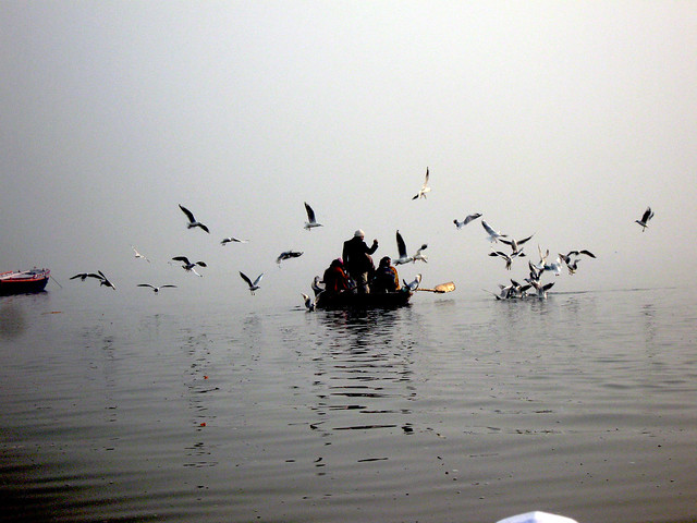 Cacophony of life on the ganga in varanasi-1