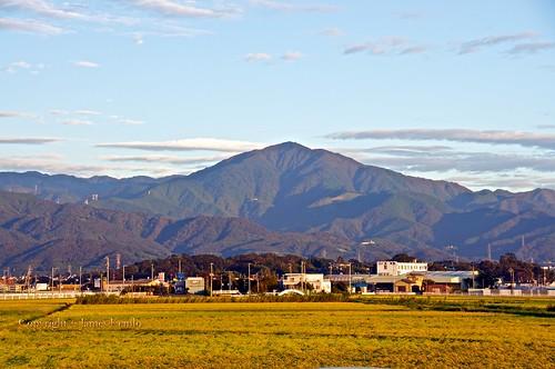 mountains japan sunrise rice crops agriculture flattened kanagawa typhoon hiratsuka fileds mountõyama ©jameskemlo ©junpeihayakawa