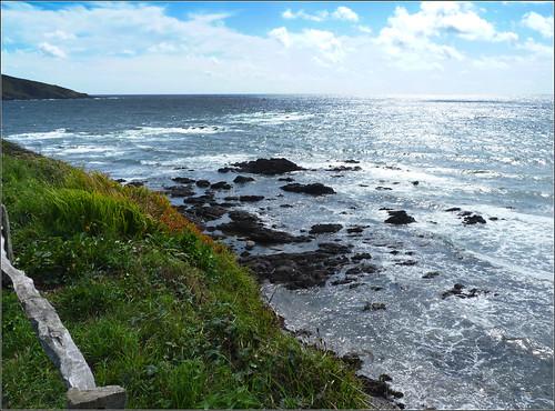 View from Wembury