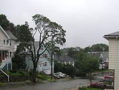 Hurricane Irene in Watertown