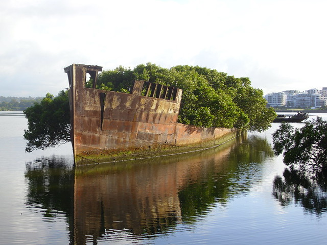 Ayrfield & Mortlake Bank wrecks in Homebush Bay / Andy Brill
