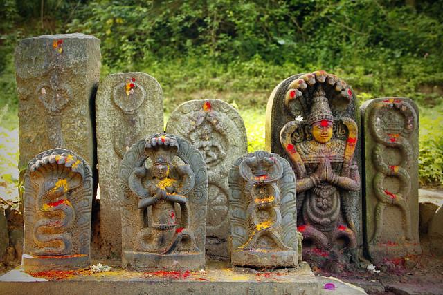 Nagaraja - Hindu Deity - India   Flickr - Photo Sharing!
