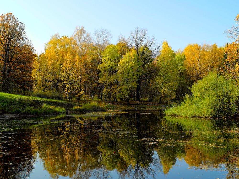 Botanical Garden, Moscow