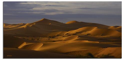 light panorama sunrise shadows desert alba dunes dune perspective ombre marocco luce deserto prospettiva ghostbuster gigi49 coppercloudsilvernsun allegrisinasceosidiventa