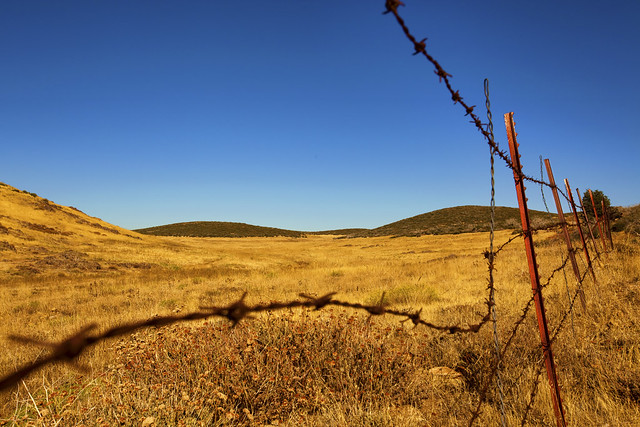 Barbed wire old fences fencing