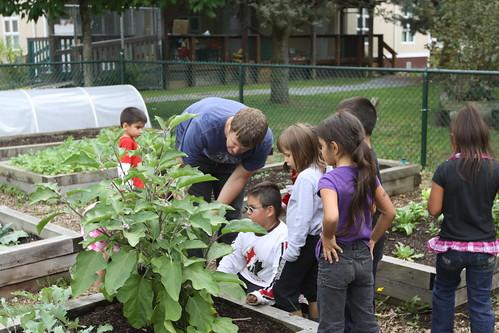 Grandview Community Garden 128