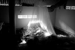 Mosquito net, Vietnam