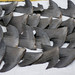 Fresh shark fins drying on sidewalk