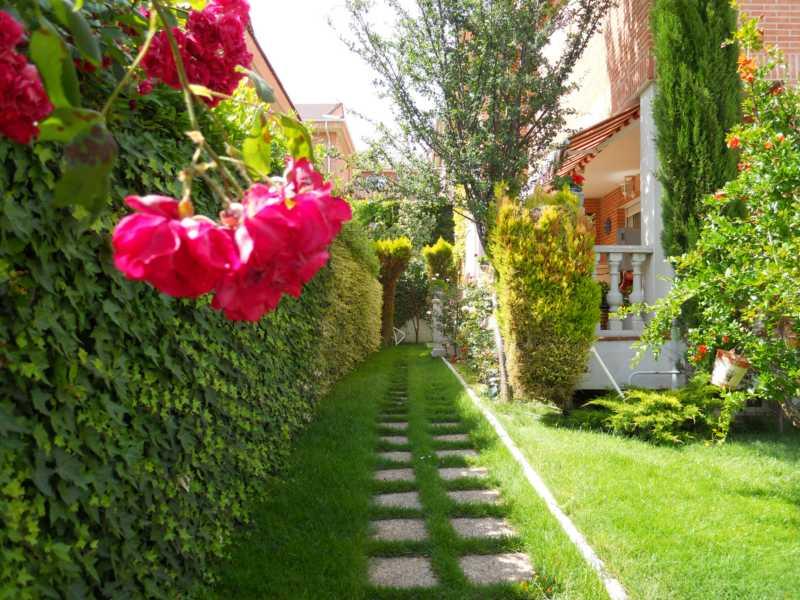 Diseño jardin estrecho
