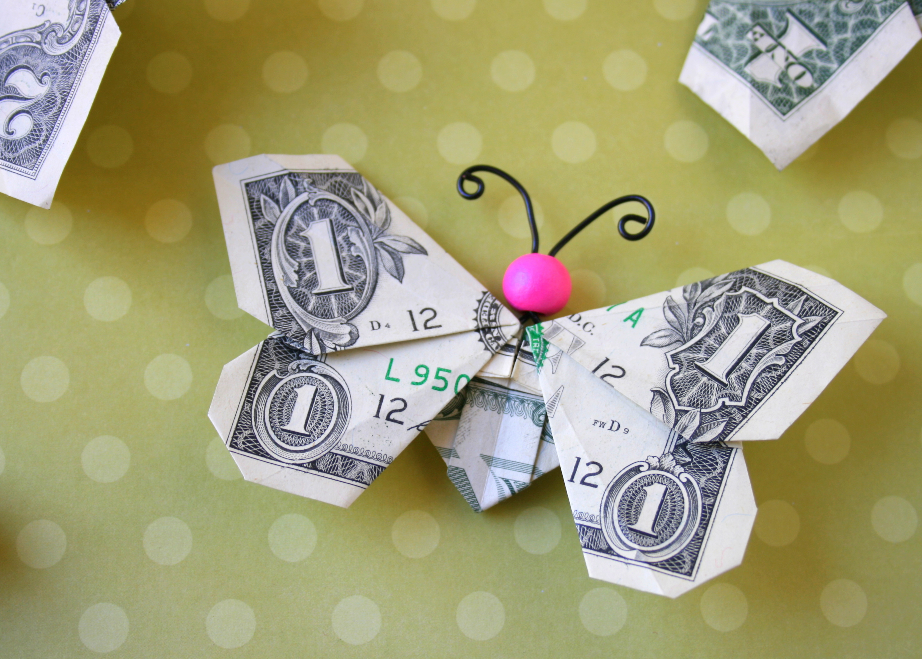 Butterfly Money | Flickr - Photo Sharing! - photo#17