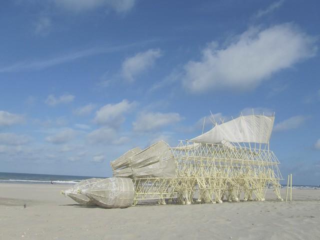 Strandbeest von Theo Jansen - gubernare fuut 2 kl