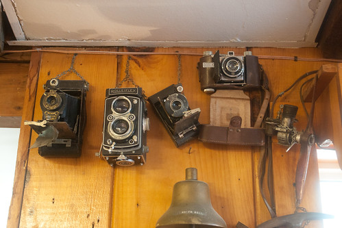 Vintage Cameras at The Lobster Shack