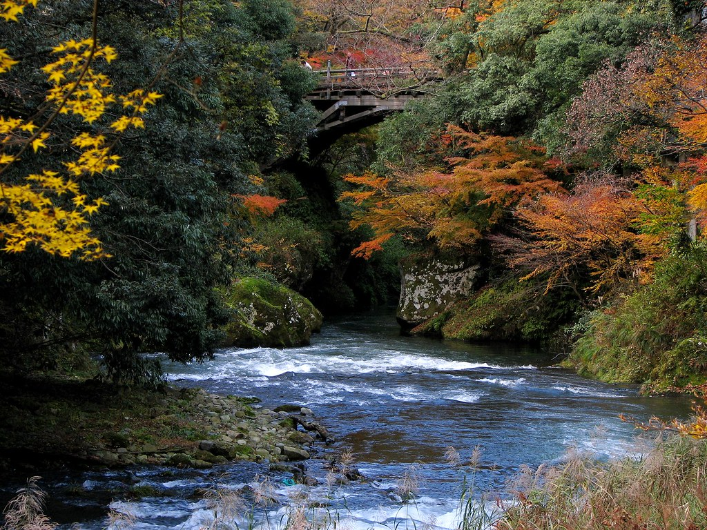 humble autumn foliage
