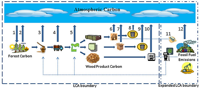 Analysis raises atmospheric ecologic and economic doubts - Increase greenhouse production cost free trick ...