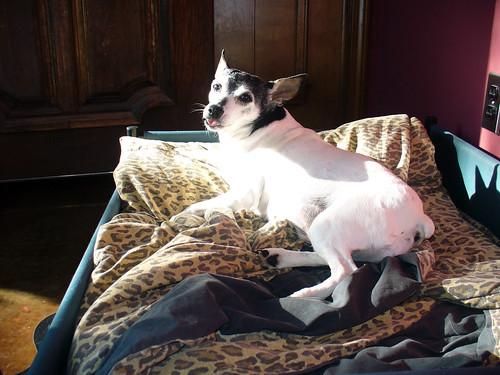 2011-09-11 - Kaylee's Sunshine Spot - 0008