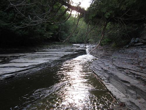 park newyork field creek river waterfall view scenic upstate martinsburg whitakerpark 091111