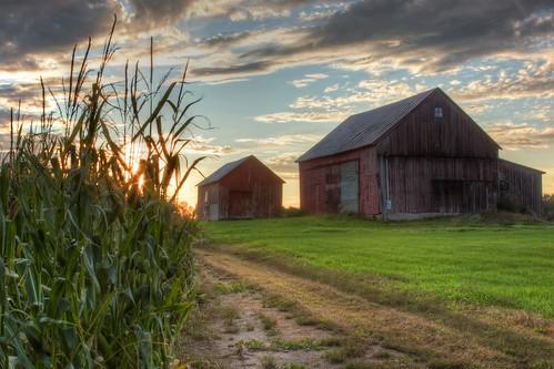 sunset barn corn vermont grandisle ef28135mmf3556isusm