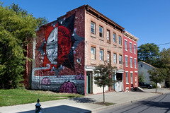 Living Walls - Albany, NY - 2011, Sep - 11.jpg by sebastien.barre