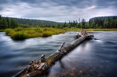 The world 39 s best photos of finland and hiking flickr for Fish river tree farm
