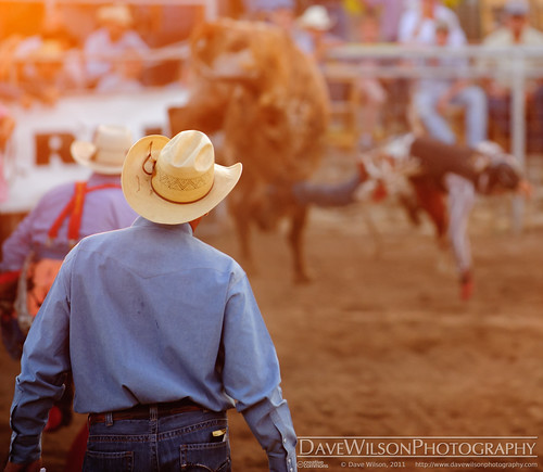 fall cowboy texas tx bull riding western rodeo rider wimberley vfw