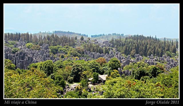 Stone forest, Yangshuo
