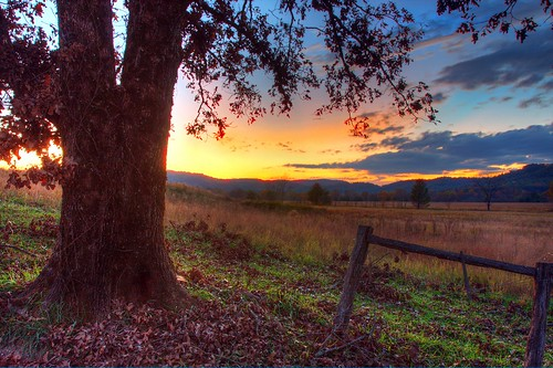 park sunset sky mountains tree leaves clouds canon fence post tennessee great row national rows hyatt smoky smokies 1740mm cadescove ln gsmnp hyattlane f4l 40d