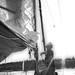 Sailboat-15 by neill mcshea