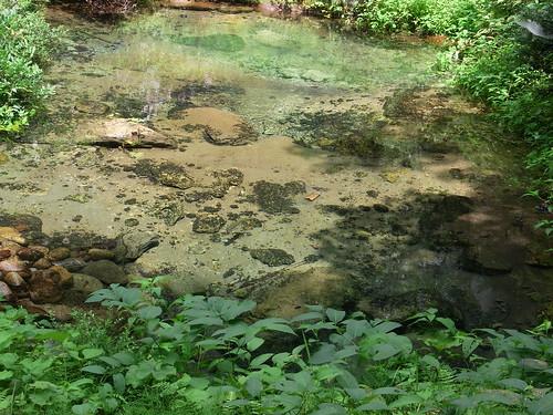 蒜山高原 塩釜の冷泉