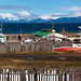 puerto natales backyard