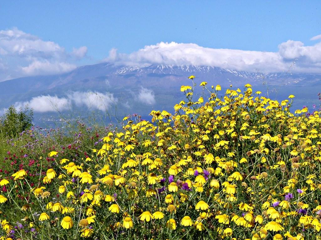 Taormina - L'Etna vista dalla località Mastrissa