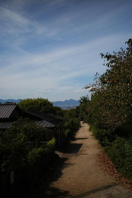 檜原神社から望む二上山